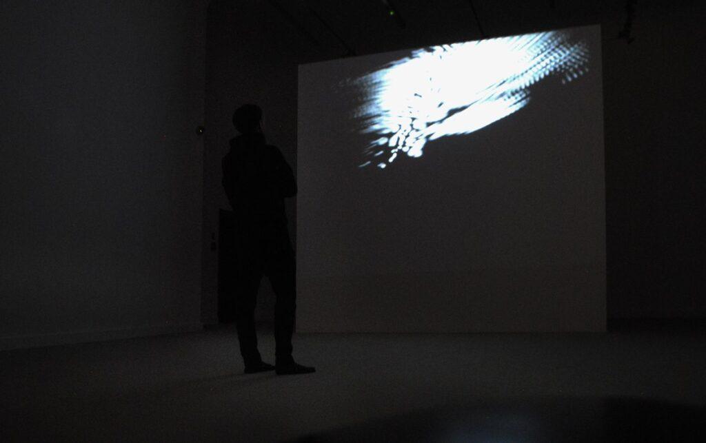 Fotografia przedstawia widok głównej sali wystawowej w kierunku ekranu projekcyjnego. Pomieszczenie jest białe, a na podłodze leży dywanowa wykładzina. Trudno jednak dostrzec kolory z uwagi na panującą ciemność, w której wszystko wydaje się jednolicie szare. Na tle szarości odcina się jedynie czarna sylwetka mężczyzny stojącego tyłem i spoglądającego na ekran. W górnej części ekranu wyświetla się biała, nieregularna zamazana plama.