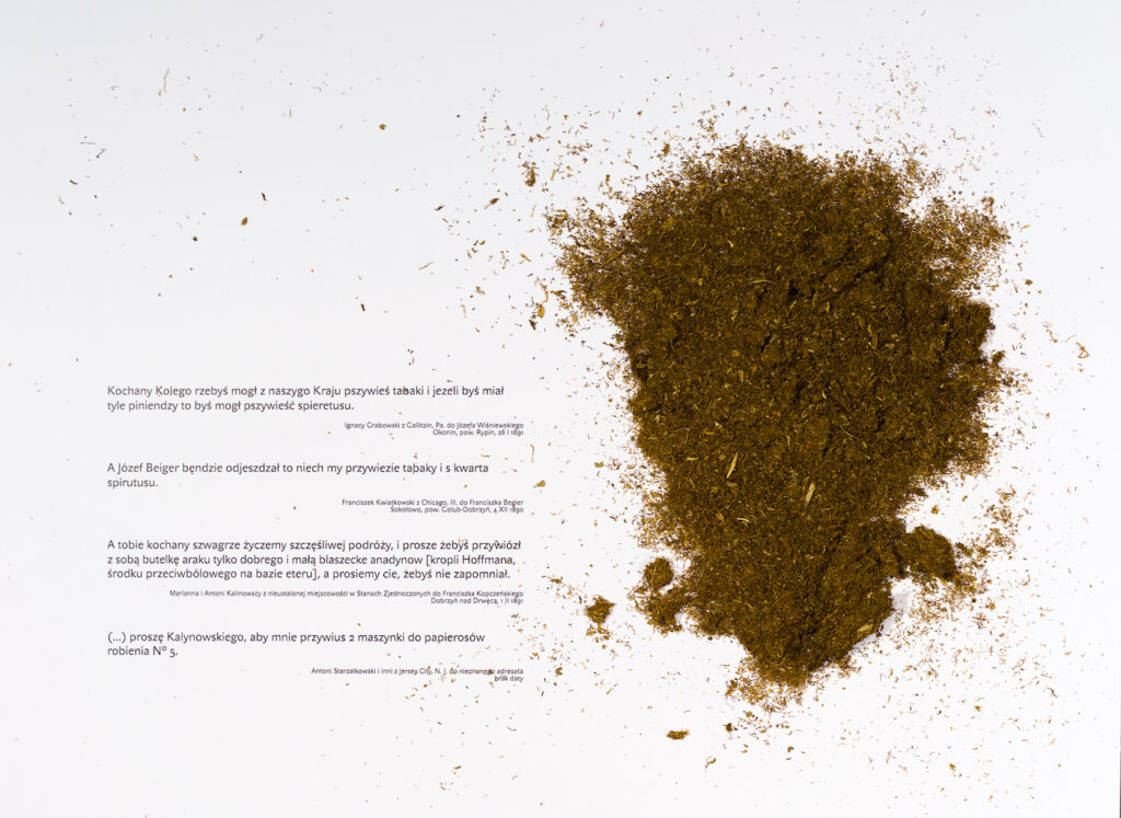 Fotografia przedstawia wnętrze jednej z szuflad. Na białym tle, po lewej stronie znajdują się cztery krótkie fragmenty listów emigrantów, w których proszą o przywiezienie im tabaki i spirytusu. Po prawej stornie wysypana jest garść prawdziwego tytoniu.