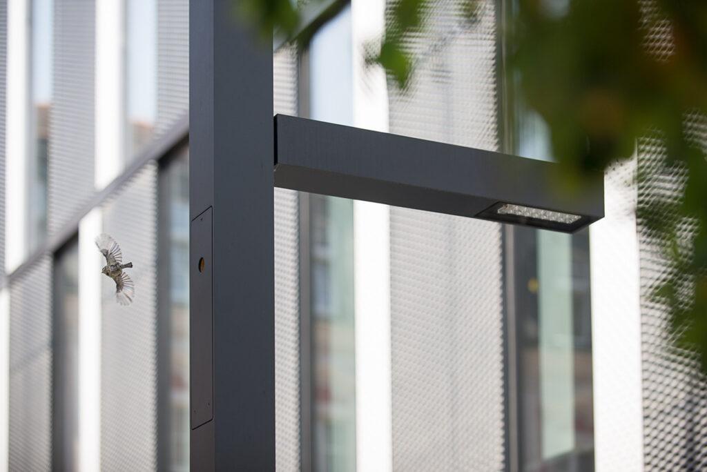 Na zdjęciu widzimy fragment górnej części nowoczesnej i minimalistycznej latarni miejskiej w kolorze grafitowym, we wnętrzu której zainstalowano ptasią dziuplę. Na zewnątrz lampy widać mały, okrągły otwór dziupli, z którego wylatuje ptaszek. Tłem fotografii jest nieostra elewacja nowoczesnego budynku z dużymi oknami oraz rozmazany fragment korony drzew z liśćmi.