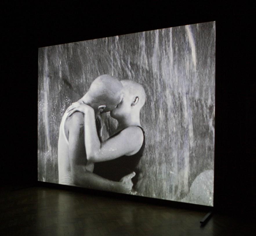 Fotografia jest kadrem czarno-białego filmu, na którym uchwycony został pocałunek pary skinheadów na tle, prawdopodobnie, wodospadu.