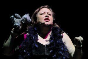 Fotografia jest portretem śpiewającej aktorki. Zbliżenie twarzy kobiety ukazuje jej makijaż z ustami umalowanymi czerwoną szminką i zarysowaną mocno oprawą oczu. Wzrok, który skierowała przed siebie, wskazuje kierunek wyśpiewywanego przekazu. Kobieta ubrana jest w czarną suknię, której jedynie górna część, zakończona zamkiem błyskawicznym, jest widoczna na zdjęciu. Z ramion aktorki zwisają pióra w kolorze szafirowym. Najbardziej odrealniającym rzeczywistość przedstawionej sceny elementem jest pluszowa zabawka, którą kobieta trzyma wysoko w prawej dłoni. Lewą ręką również wykonuje zdecydowany gest, dopełniając dynamiczny obraz całości, który tworzą także: czerwony klips, dwie bransoletki i umieszczony po prawej stronie twarzy mikroport.