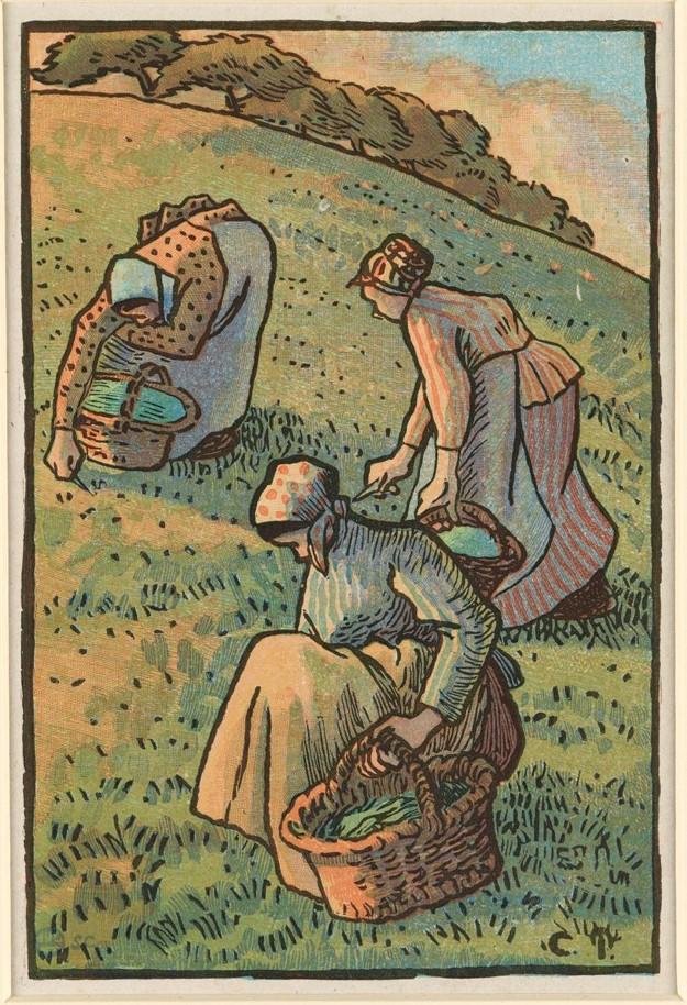 Grafika przestawia trzy kobiety pielące trawę. Wszystkie ubrane są w długie spódnice i kaftany, noszą chustki na głowach i trzymają wiklinowe koszyki. Kobieta widoczna pośrodku dolnej części grafiki kuca, pochylając głowę. Powyżej niej, po prawej, druga kobieta pochyla się, trzymając nóż. Trzecia postać, w górnej lewej części odbitki, zgięta w pół, ścina rośliny nożem. Na horyzoncie widać drzewa  i niewielki wycinek nieba z chmurami. Obszar pokryty trawą zajmuje niemal całe pole grafiki, horyzont umieszczono blisko górnej krawędzi. Kolory są stonowane, dominuje zieleń.