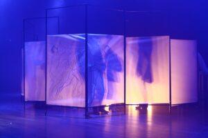 Wykonane w szafirowo-różowej tonacji zdjęcie jest tajemnicze. Przedstawia wykonany z pergaminu parawan, osadzony na czarnym, metalowym stelażu. Na dwóch centralnie usytuowanych płaszczyznach widać naszkicowane węglem postaci tańczących ludzi. Umieszczone za parawanem światło rzuca cienie znajdujących się za nim osób. O ich obecności świadczą też, widoczne u dołu, stopy trojga aktorów ubrane w buty – jedyny konkretny, realny akcent na fotografii.
