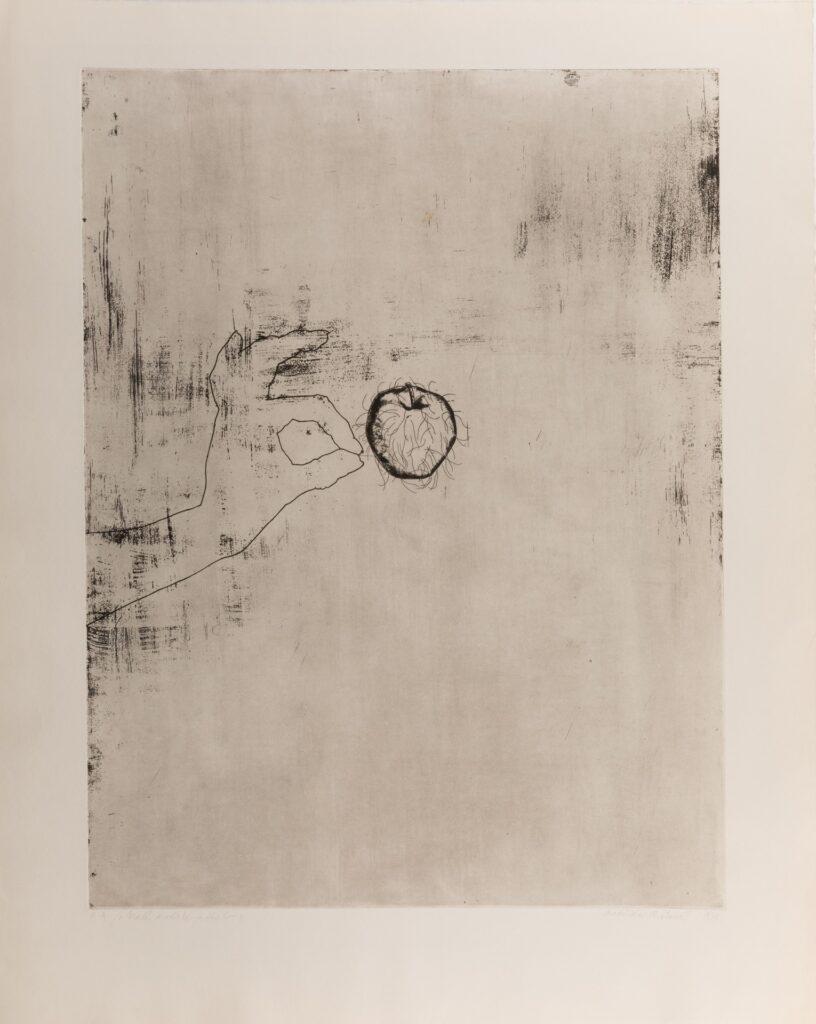 W centralnej części czarno-białej grafiki znajduje się jabłko z drobnymi włoskami. Z jego lewej strony widzimy obrys dłoni wyrywającej jeden z włosków. Tło pracy jest raczej jednolite, jedynie w niektórych miejscach widać czarne zamazania, przetarcia i celowo wykonane przez artystkę plamki.