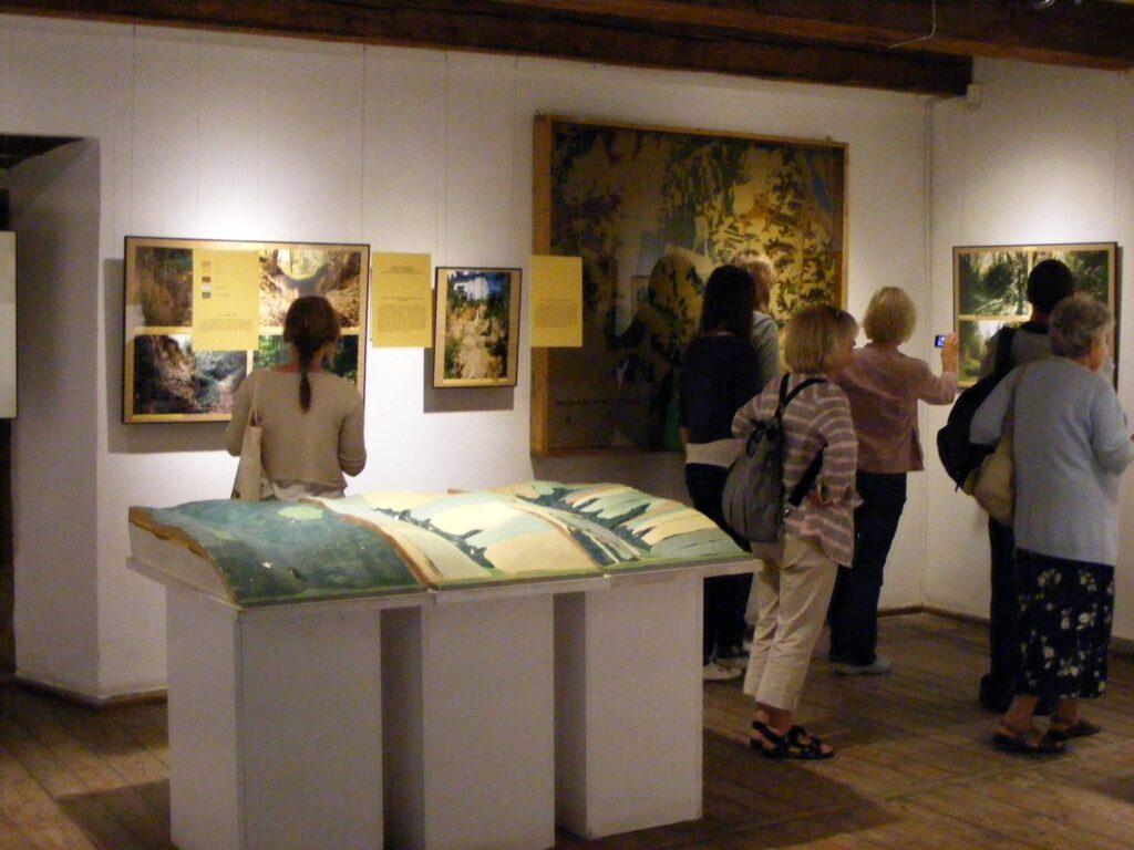 Uczestnicy pleneru przebywają w sali muzealnej, oglądają wystawione w nim obrazy.