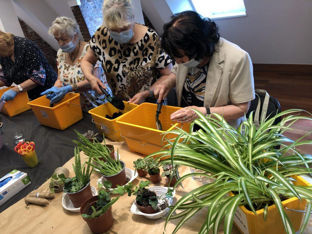 Cztery starsze kobiety stoją w rzędzie przy warsztatowym stole. Na rękach mają niebieskie rękawiczki, zaś usta są przysłonięte maseczkami. Panie właśnie sadzą rośliny. Cała powierzchnia stołu zastawiona jest sadzonkami i różnymi rekwizytami ogrodniczymi.