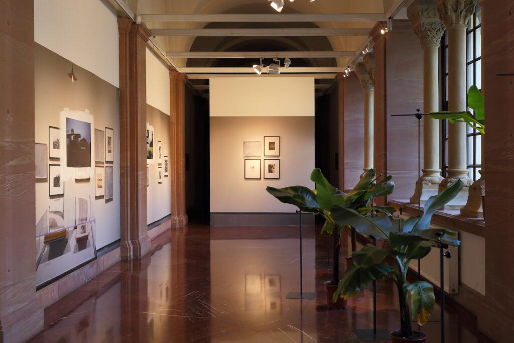 Zdjęcie przedstawia jasne wnętrze galerii, na ścianach której wylepione zostały tapety wydrukowane ze zdjęć wykonanych przez artystę w Los Angeles County Museum of Art (LACMA). Wzdłuż okien galerii, po prawej stronie, stoją w donicach bananowce.  Bezpośrednio na liściach krzewów bananowca wywoływane były obrazy fotograficzne za pomocą negatywów fotograficznych nałożonych na liście. Przez cały czas trwania wystawy światło wpadające przez okna galerii, przefiltrowane przez negatyw fotograficzny, tworzyło obrazy na liściach roślin.