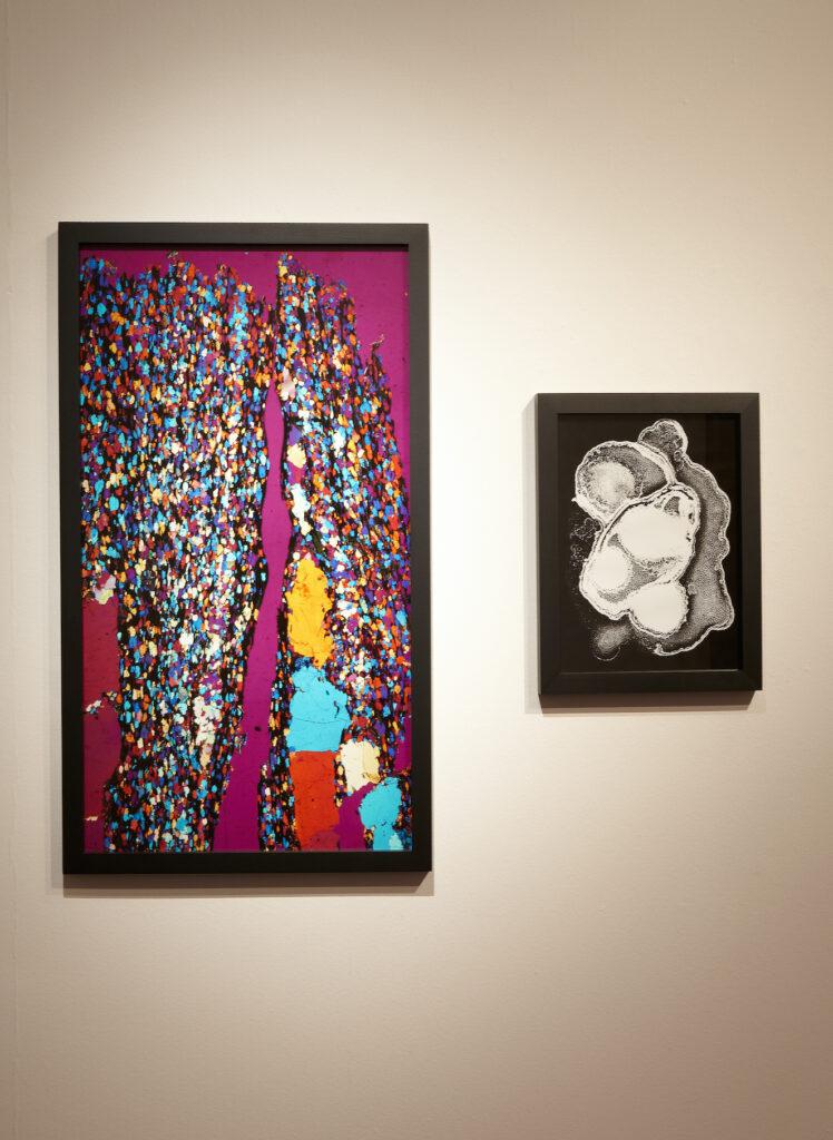 Zdjęcie przedstawia dwie abstrakcyjne fotografie zawieszone obok siebie. Fotografia po lewej stronie jest duża, wielobarwna i oprawiona w czarną, prostą ramę. Fotografia wisząca po prawej stronie jest mniejsza i czarno-biała, przedstawia formę przypominającą organiczne, obłe kształty.