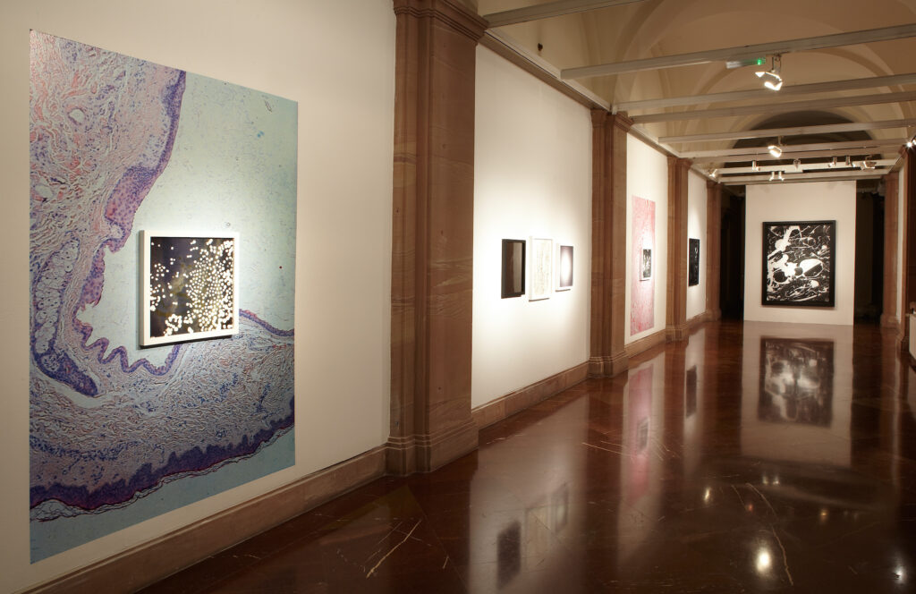Zdjęcie przedstawia jasne wnętrze galerii. Na białych ścianach po lewej stronie oraz na ścianie w głębi galerii wiszą fotografie. Na pierwszym planie, po lewej stronie, znajduje się ściana, na którą nalepiona została kolorowa fotografia, a na niej powieszona została inna, kwadratowa oprawiona w białą ramę. W głębi na ścianie zamykającej przestrzeń galerii wisi wielkoformatowa czarno-biała fotografia.